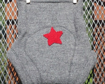 Upcycled Wool Diaper Cover, Soaker, medium, extra layer, gray with red star on bum