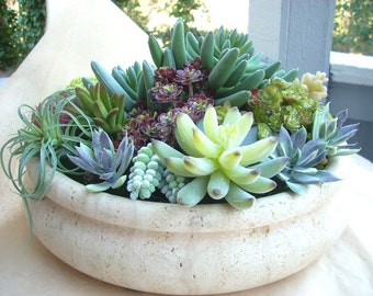 Faux Succulent Indoor Garden, Artificial Cactus Garden, Modern Artificial Succulent Centerpiece