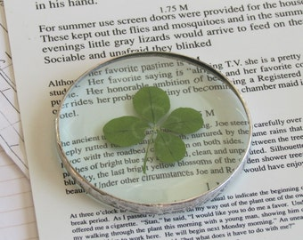 Four Leaf Clover Glass Paper Weight One of a Kind Botanical Ornament Unique Gift Idea for Everybody