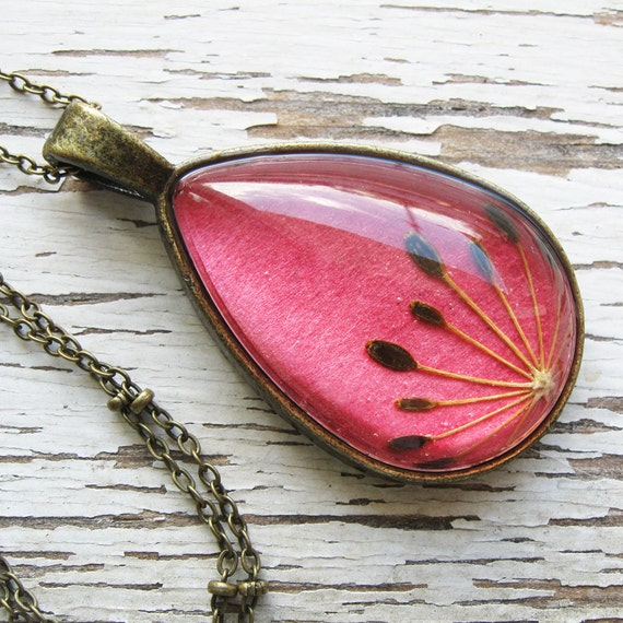 Real Seed Necklace - Herbal Jewelry - Coral Dill Seeds Botanical Teardrop Necklace