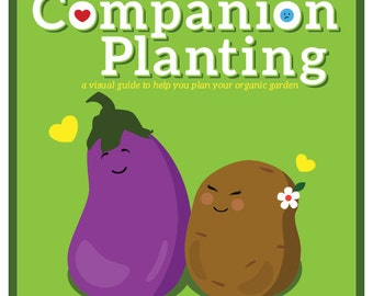 Companion Planting Infographic Chart: A Gardener's Friend–1st Edition