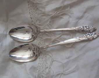 Silver Plate Large Serving Spoon Set of 2 - Evening Star Pattern (39K)