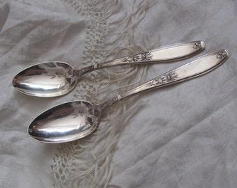 Vintage Silver Plate Large Serving Spoon Set of 2 - Ambassador 1919 Pattern
