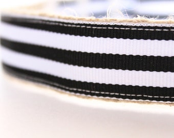 Black Stripe Dog Collar, Tuxedo Dog Collar, Black and White Collar, Wedding Dog Collar, Holiday Dog Collar