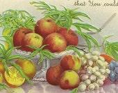 Vintage Thanksgiving Postcard Table Set With Harvest Bounty Stecher Litho Apples Oranges Grapes