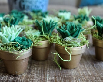 Bulk potted succulents / felt succulents / wedding favors /  felt plant / rustic wedding