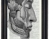 BOGO SALE Anatomy Wall Art Prints Dictionary Art Prints Body Wall Art Prints Body Art Prints