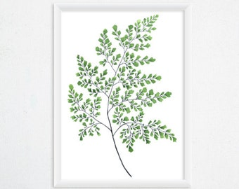 Maidenhair Fern Print - Botanical Watercolor Art, Fern Painting / 8x11 Fern Watercolor, Tropical Wall Decor