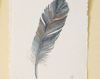 Feather watercolour original illustration painting one of a series collection