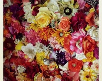 Photography, floral, print, art, deco, design,