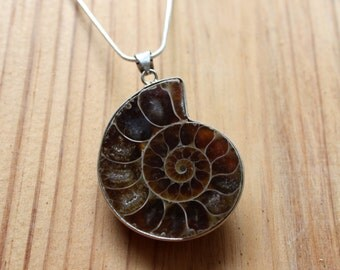 Ammonite Necklace - Ammonite Fossil Necklace - Fossil Jewelry - Ammonite Pendant - Nautilus Fossil - Sterling Silver - Spiral Shell Fossil