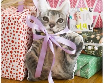 Custom Cat Pillow