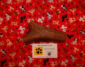 "Organic XL Elk Antler Dog Chew ""Made in Montana"" (Lot C80)"