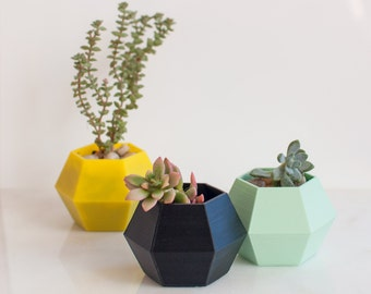 Hexagonal Succulent Planter