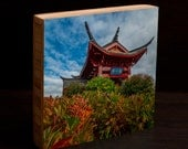 Chinese, Park, flowers, wall art, northwest, pacific, tacoma, asian art, living room, attraction, architecture, dragon, blue sky