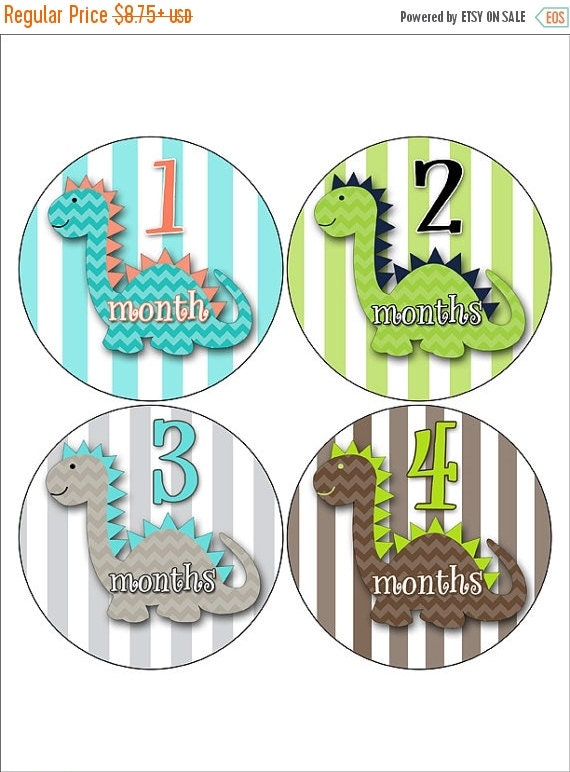 On Sale Dinosaur Baby Stickers Monthly Baby By