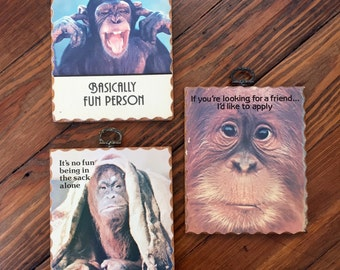 3 Funny Money Wood Signs - Monkeydoin's - Fun Decor