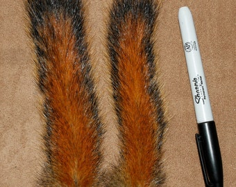 ONE Thick Bushy Alaska Red Pine Squirrel Tail Taxidermy