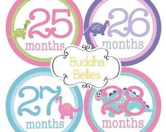Baby Girl Month Stickers - Dinosaur Third Year Stickers - 3rd Year Monthly Stickers - Girl Dinosaur - 2nd Birthday Gift - Baby Girl Decals