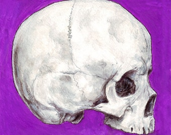 Skull 8x8 print of original watercolor painting