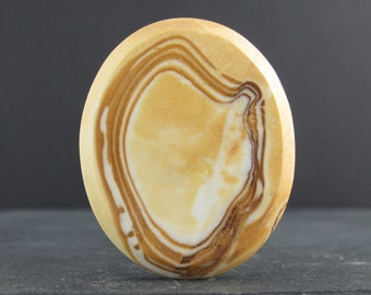 Beautiful petrified wood cabochon S7053