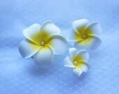 With Pearls!!! 3 pcs White Hawaiian Plumeria Frangipani Flower Hair Clip