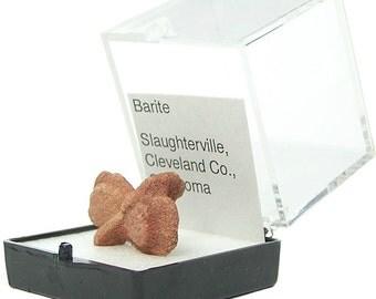 Barite Baryte Rock Rose, Burnt Orange Bow Tie Crystal, Thumbnail Mineral Specimen from Oklahoma, Geology Curiosity, Gemstone Earth Treasure