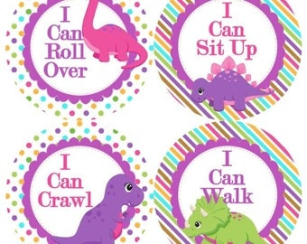 Baby 1st First MILESTONES Growth Stickers Girls in Pink Purple Dinosaur Girly MS513 Nursery Theme Baby Shower Gift Baby Photo Prop