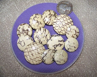 Set of 12 Vintage Genuine Snake Skin Buttons