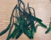 "100% Cruelty Free - Lot of 20 Dyed Green Emu Feathers 5"" to 8"" inches EM2"
