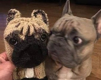 Hand knit French Bulldog club cover made to order