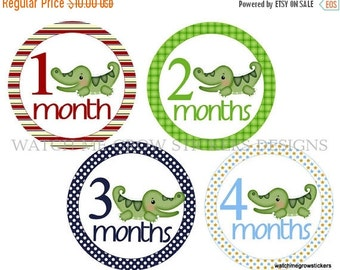 Sale Monthly Baby Stickers Alligator Month Stickers Monthly Baby Stickers Baby Milestone Stickers Baby Shower Gift Boy Photo Prop