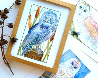 Greeting Cards, Fine Art Print, Blank cards, Owls set of 6