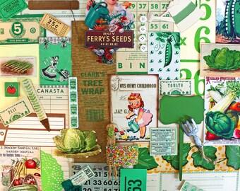 Garden Inspiration Kit*Green Inspiration Paper Pack*Garden Scrapbook Supplies*Green Gardens
