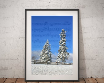 Winter Country scenery Photograph, Winter scenery photography, Canada Trees, Snow scenery Art Print, and Tree Photograph