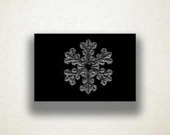 Ice Crystal Canvas Art Print, Snowflake Wall Art, Ice Canvas Print, Snowflake Close Up Wall Art, Canvas Art, Canvas Prin t, Home Art, Art