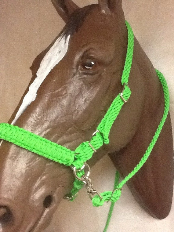 how to use a side pull bridle