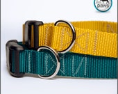 Solid Color Dog Collar- Teal or Yellow