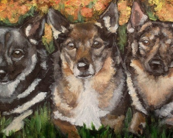 Swedish Vallhunds 'Chip, Aria and Tiwaz' painted on cooler