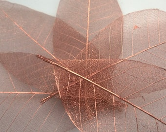 Copper skeleton leaves, set of 20 copper leaf skeletons, magnolia leaves