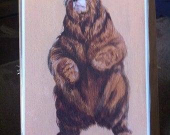 The Bear Print