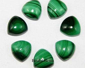 20 Pieces Lot Top Quality Malachite Trillion Shape Gemstone Cabochon For Jewelry
