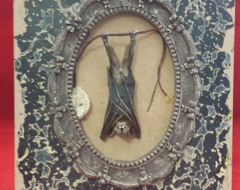 Taxidermy Bat in Fancy Frame-Tabletop Frame///voodoo-witch-pagan-magic