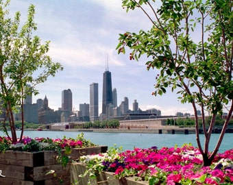 Large Magnet, Chicago Waterfront, Illinois USA, 2005