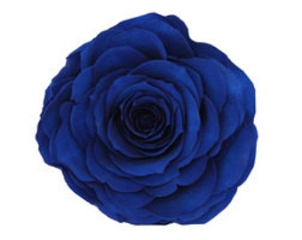 Preserved Natural Lovely Blue Roses, Preserved Blue Rose, Blue Roses,   Simply Beautiful !