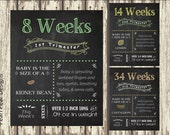 ALL 17 Printable File Pregnancy Chalkboard  Weeks - from 1st, 2nd, 3rd  Trimester chalkboard pregnancy week by week tracker