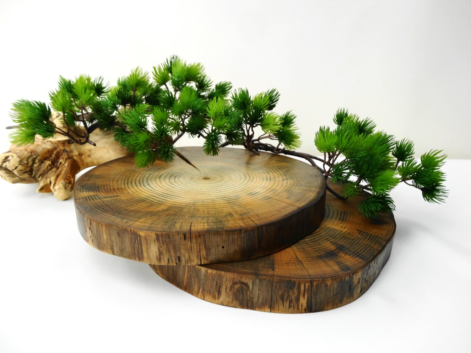 Wood slices 9 inch wood slices tree slice tree trunk slice for Tree trunk slice ideas