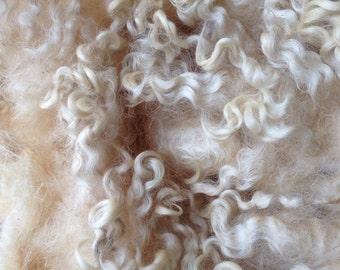 Cotswold sheep wool fleece silky lustrous wool locks 200g Golden Fleece, raw unwashed