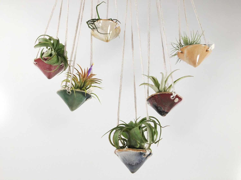 air plant hanging planter air plant holder mini cone. Black Bedroom Furniture Sets. Home Design Ideas
