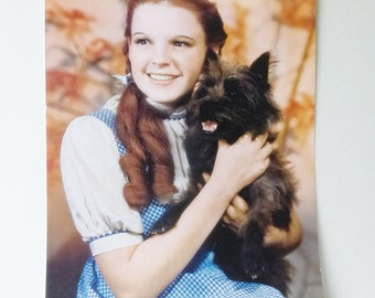 Judy Garland and Toto Color Photo Image/Poster The Wizard of OZ